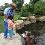 子連れ上海旅行 上海野生動物園
